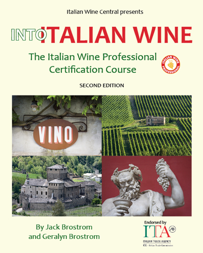 Into Italian Wine front cover