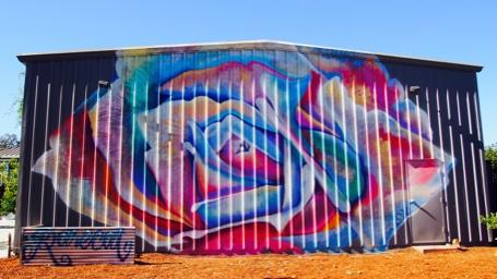 rarecat grafiti