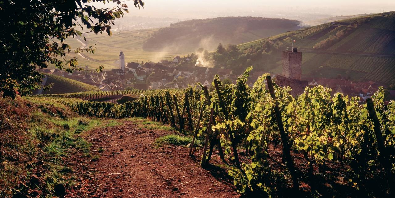 Photo 5 - Katzenthal