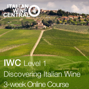 iwc-level-1-course-online