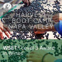 Level-3-Harvest-Boot-Camp