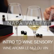 intro-to-wine-senory