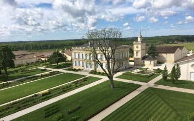 5 Bordeaux Wine Facts Made Clear by Traveling